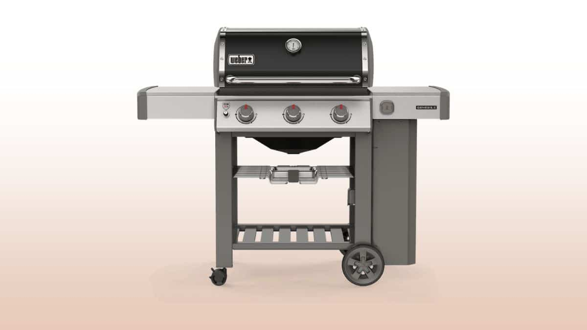 weber genesis ii e 310 isolated