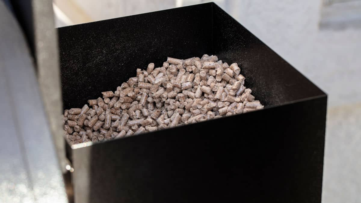 Wood pellets in the hopper of a pellet grill and smoker