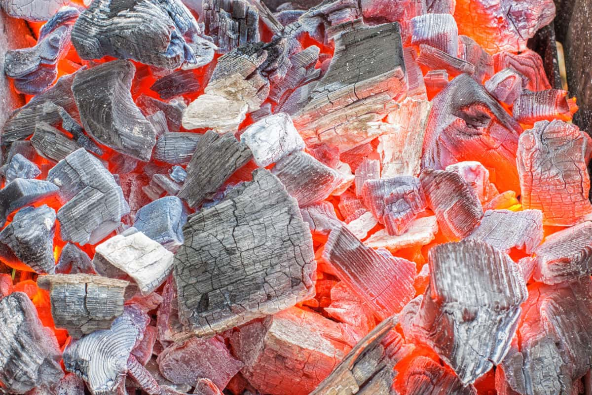 Lump charcoal on fire, burning red and white