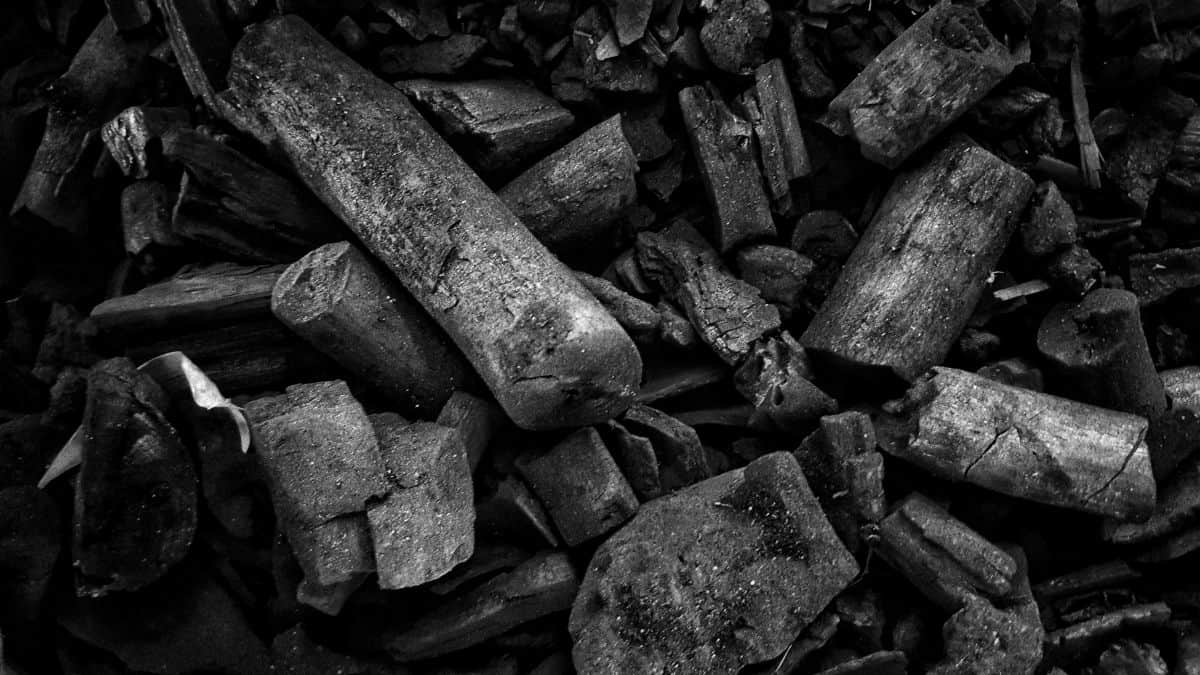 Lot sof large and medium sized lump charcoal pieces