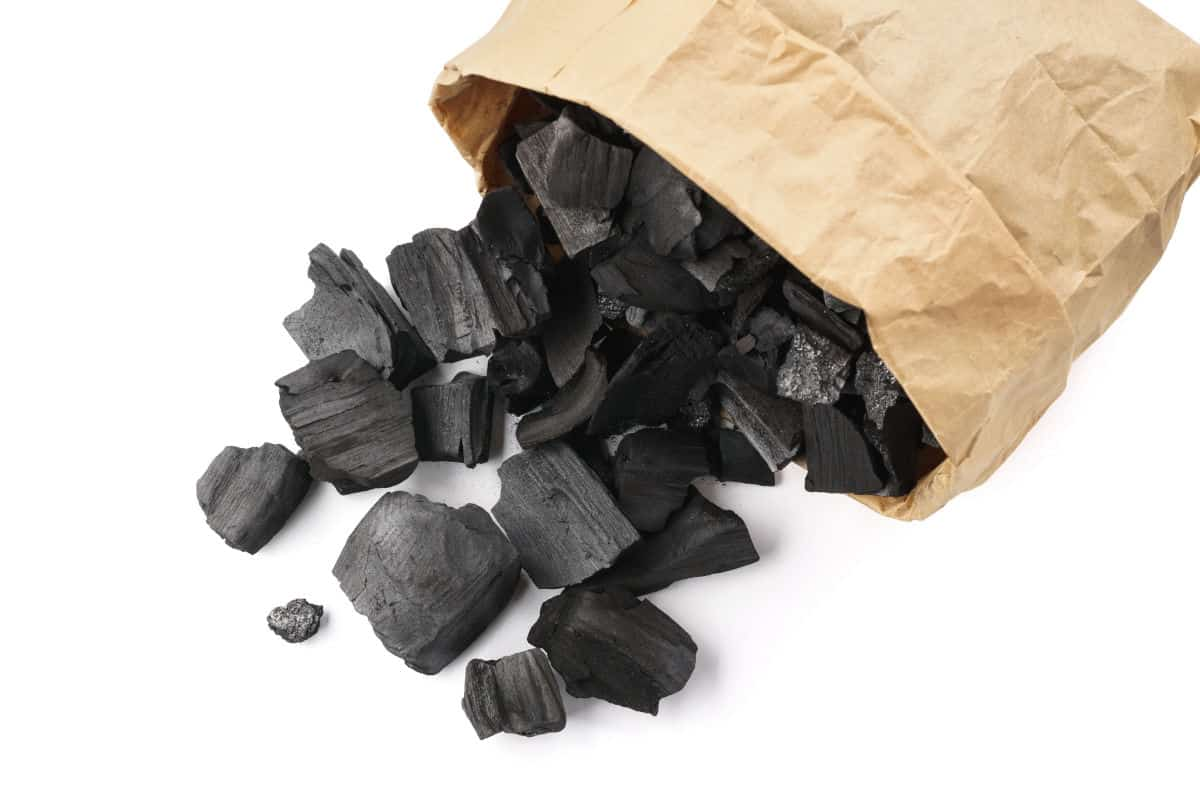 An open bag of charcoal, some pieces spilling out, isolated on white